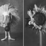 Inspiration –  Yulia Artemyeva